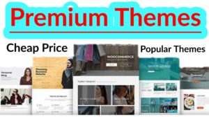WordPress Best Premium Themes for Website